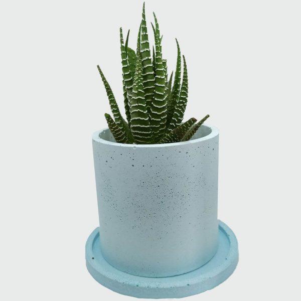Venta de maceta cilíndrica de concreto color azul a buen precio