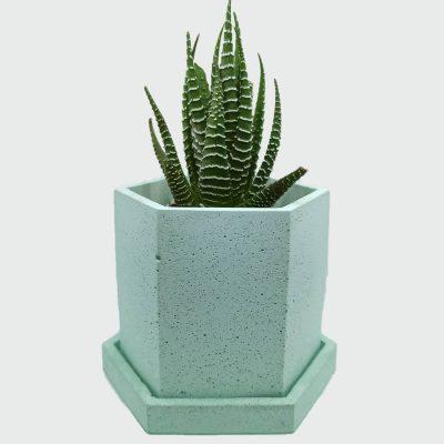 Maceta de cemento figura hexágono color verde marino