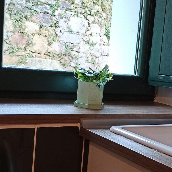 Maceta hexagonal de cemento color verde con plato