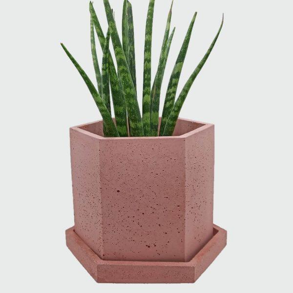 Maceta hormigón hexagonal color rosa